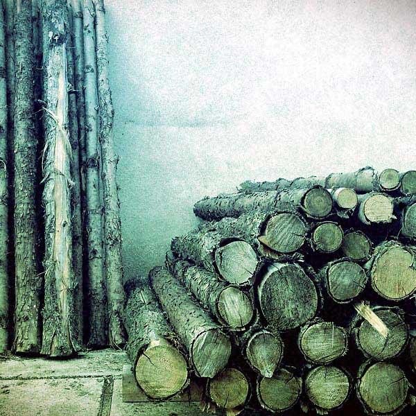 le bois s'écrit