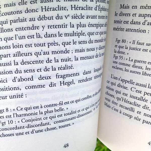 pourquoi philosopher ? || jean-françois lyotard