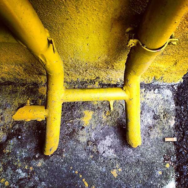 enrobé de jaune