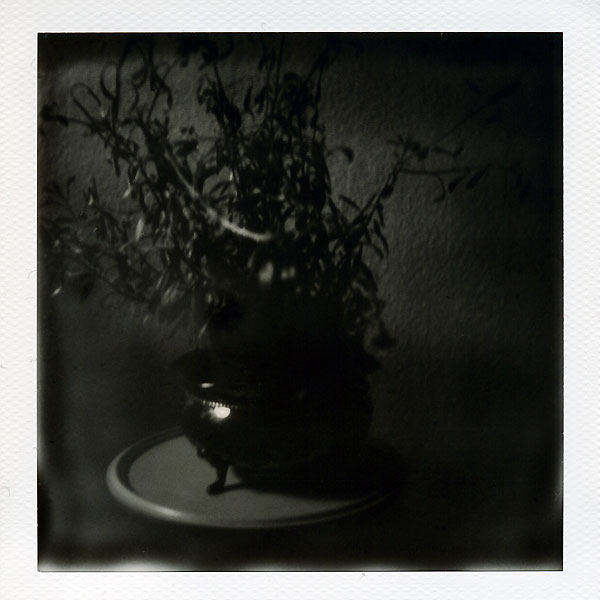nature morte pot