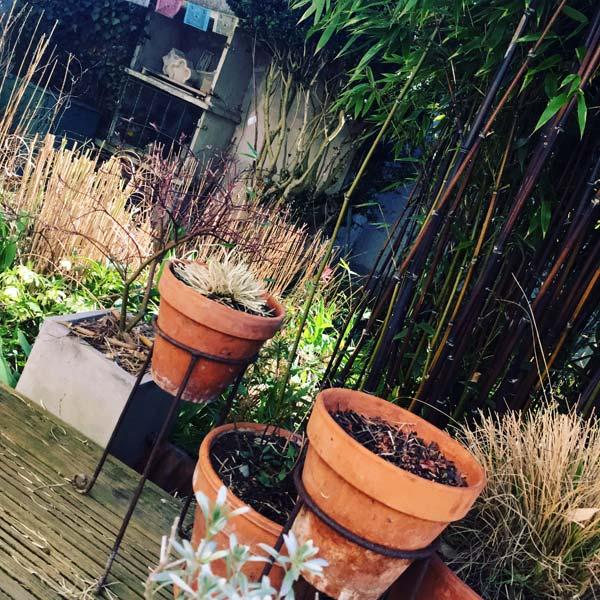 jardin en éveil