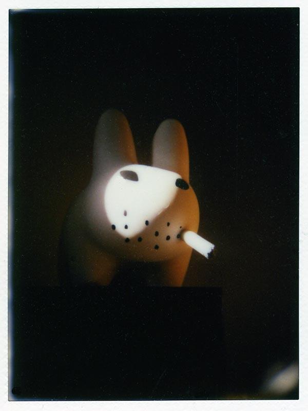 le lapin fume